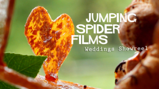 Wedding Videography Showreel by Jumping Spider Films