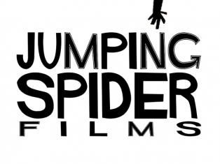 Jumping Spider Films - Why did we choose do call ourselves Jumping Spider?