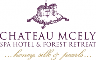 Chateau Mcely
